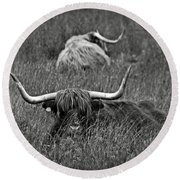 A Highland Cattle In The Scottish Highlands Round Beach Towel