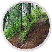 A Hiking Trail Goes Up Saddle Mountain Round Beach Towel