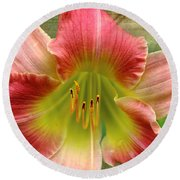 A Lily A Day Round Beach Towel