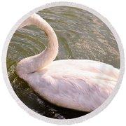 A Lone Swan Named Gracie Round Beach Towel