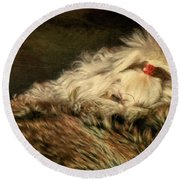 A Long Winter's Nap Round Beach Towel by Lois Bryan