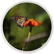 A Monarch Butterfly 1 Round Beach Towel