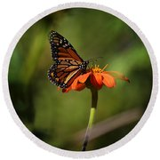 A Monarch Butterfly 2 Round Beach Towel
