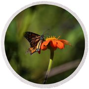 A Monarch Butterfly 3 Round Beach Towel