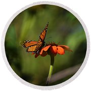 A Monarch Butterfly 4 Round Beach Towel