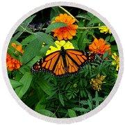 A Monarchs Colors Round Beach Towel