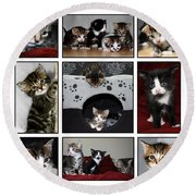 A Montage Of Kittens Round Beach Towel