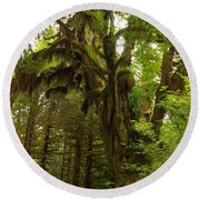 A Moss Covered Tree  In The Ho National Rain Forest Round Beach Towel