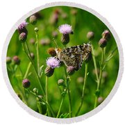 A Painted Lady Round Beach Towel