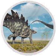 A Pair Of Stegosaurus Dinosaurs Round Beach Towel