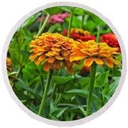 A Pair Of Yellow Zinnias 03 Round Beach Towel