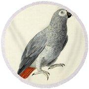 A Parrot Round Beach Towel