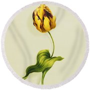 A Parrot Tulip Round Beach Towel