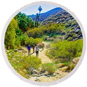 A Pause On Lower Palm Canyon Trail In Indian Canyons Near Palm Springs-california Round Beach Towel