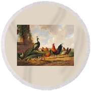 A Peacock And Chickens In A Landscape  Round Beach Towel