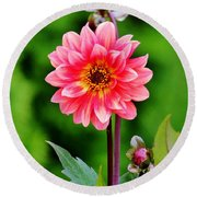 A Pink Flower Round Beach Towel