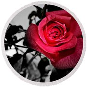 A Pop Of Red - Rose  Round Beach Towel