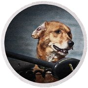 A Portrait Of A Golden Retriever Round Beach Towel