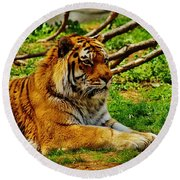 A Real Detroit Tiger Round Beach Towel