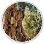 A Really Old Olive Tree Round Beach Towel