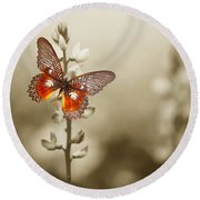 A Red Butterfly On The Moody Field Round Beach Towel