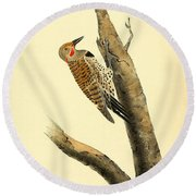 A Red Moustached Woodpecker Round Beach Towel by Philip Ralley