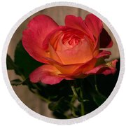 A Red Rosr Against A Weathered  Wood Background Round Beach Towel
