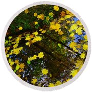 A Reflection Amongst The Leaves Round Beach Towel