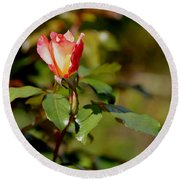 A Rose For You Round Beach Towel