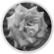 A Rose In Black And White Round Beach Towel