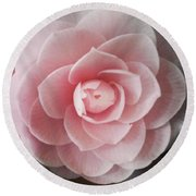 A Rose Is A Rose Is A Rose Round Beach Towel