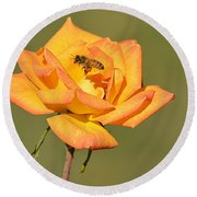 A Rosy View Round Beach Towel