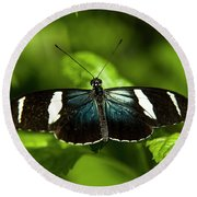 A Sara Longwing Butterfly Heliconius Round Beach Towel