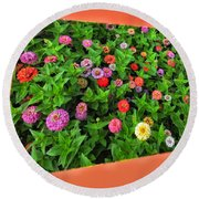 A Sea Of Zinnias 06 Round Beach Towel