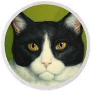 A Serious Cat Round Beach Towel by James W Johnson