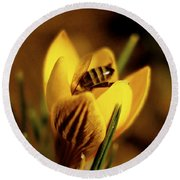 A Sign Of Spring Round Beach Towel