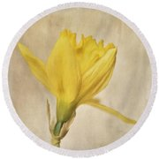 A Simple Daffodil Round Beach Towel
