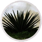 A Simple Yucca Round Beach Towel