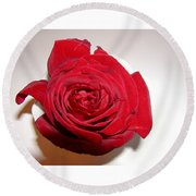 A Single Red Rose Round Beach Towel