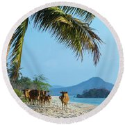 A Small Herd Of Cows Round Beach Towel