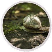 A Snail's Pace Round Beach Towel