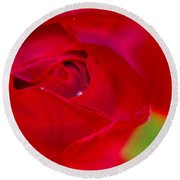 A Soft Wet Rose Round Beach Towel