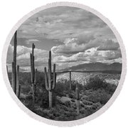 A Sonoran Winter Day In Black And White  Round Beach Towel
