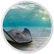 A Southern Stingray Round Beach Towel
