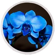 A Stem Of Beautiful Blue Orchids Round Beach Towel