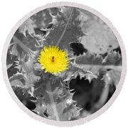 A Sticky Flower Round Beach Towel