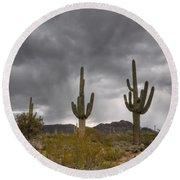 A Storm In The Sonoran Desert Round Beach Towel