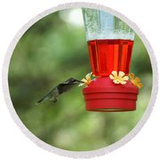 A Tiny Little Ruby-throated Hummingbirds Round Beach Towel