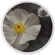 A Touch Of Color - Poppy Round Beach Towel