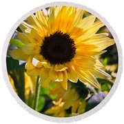 A Touch Of Sunflower Round Beach Towel